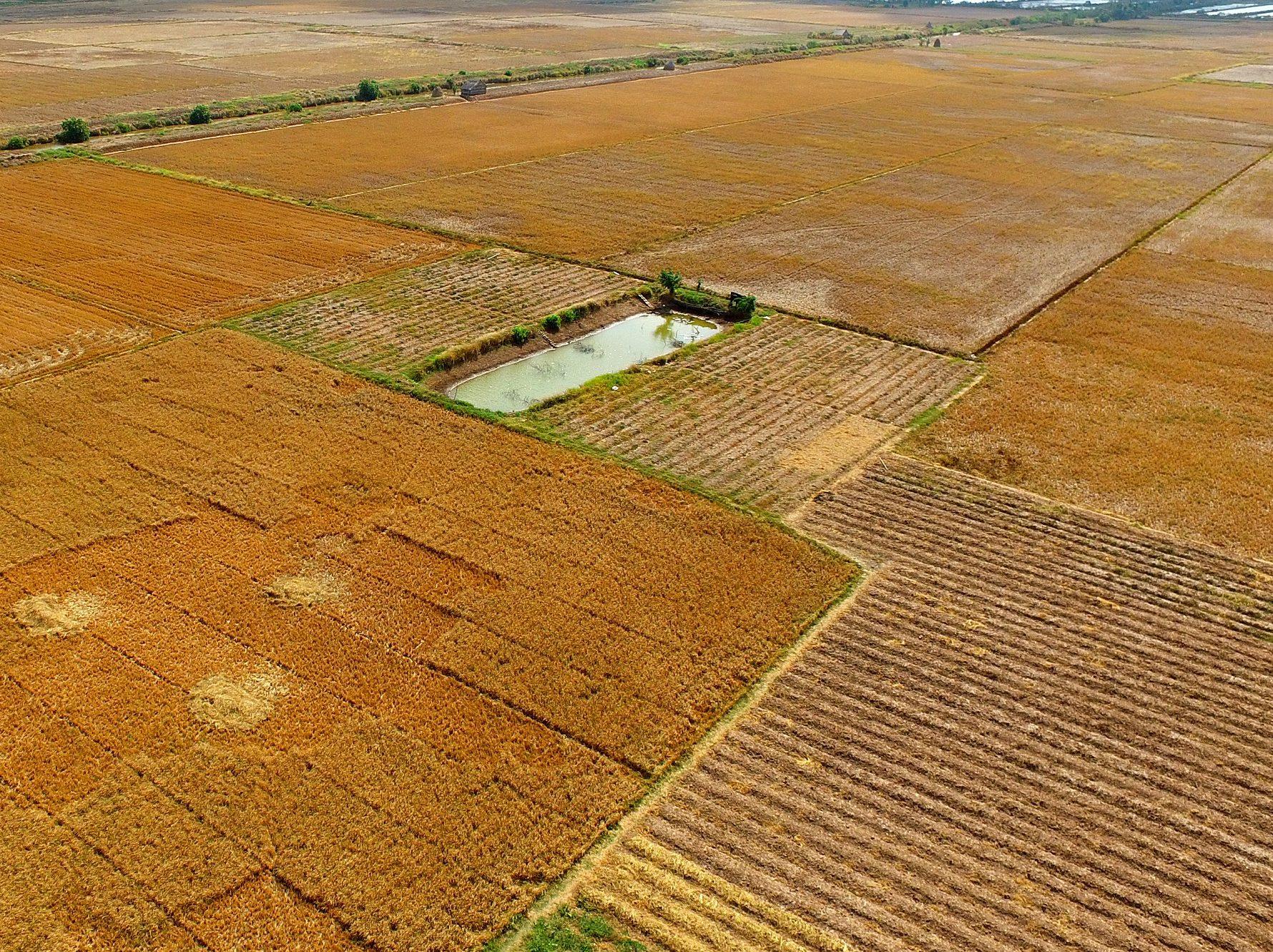 Các câu chuyện về quản lý hệ thống thủy lợi tại An Giang