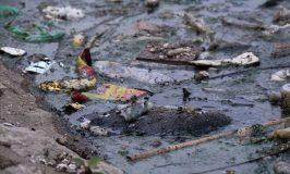 """Liệu có cứu nổi các con sông """"chết"""" ở Hà Nội?"""