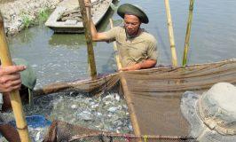 'Tử huyệt' nguồn nước sông Mê Kông