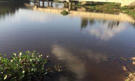 Hà Tĩnh: Cuộc sống người dân đảo lộn vì sông Già ô nhiễm bất thường