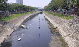 Sông Tô Lịch chết dần