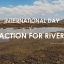 Drought and saline intrusion in Mekong Delta and the International Day of Action for Rivers 14/3/2020