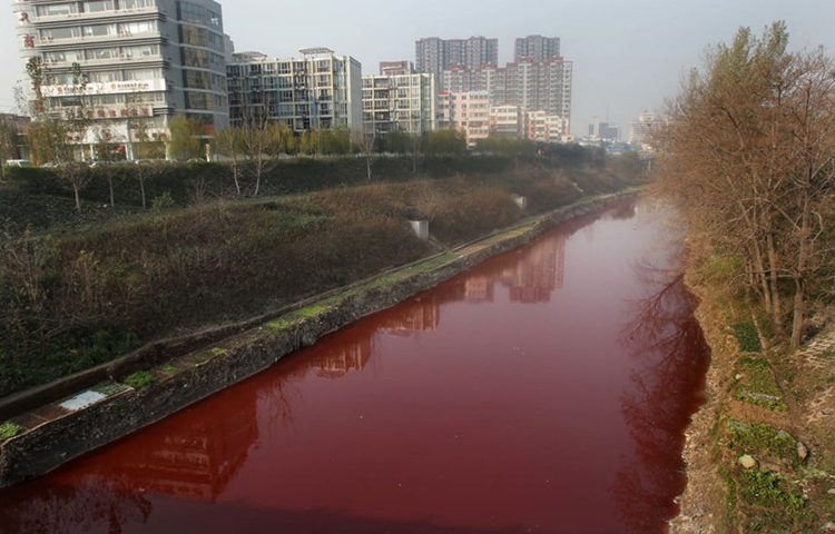 """Câu chuyện về những dòng sông """"nhuộm đen"""" tại châu Á"""