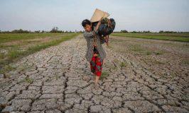 Những thách thức miền Tây đối mặt khi lũ thấp