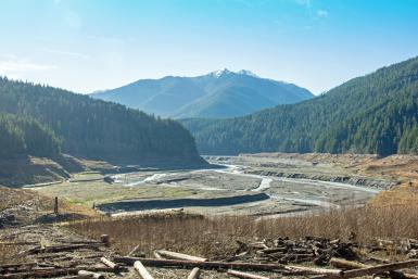 Why Are We Removing Dams?
