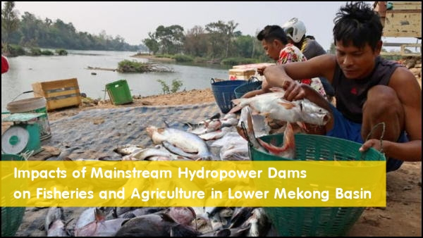 Impacts of Mainstream Hydropower Dams on Fisheries and Agriculture in Lower Mekong Basin