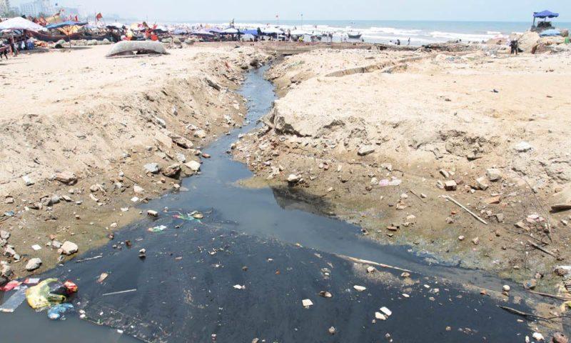 Ô nhiễm môi trường biển đang gây áp lực lên hệ sinh thái